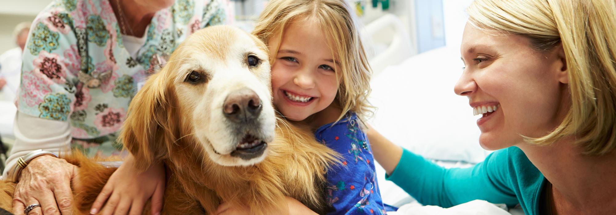 Zusammen mit Tieren heilen